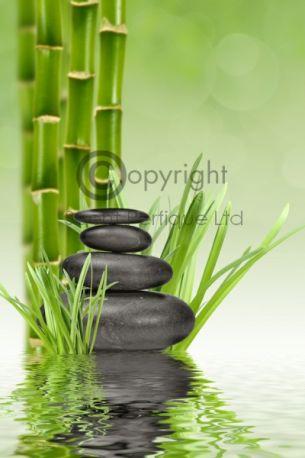 Thai Bamboo & Coconut