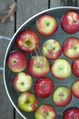 Apple Bobbin Fragrance Oil