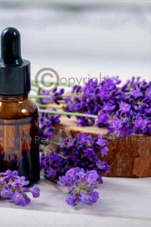 Oud Lavender Fragrance Oil