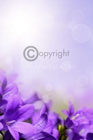 parma-violet