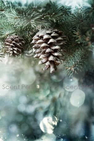 Snow Forest Fragrance Oil