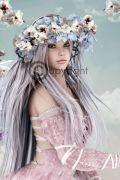 Festive Fairies