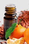 Mandarin & Sandalwood CONC Fragrance Oil