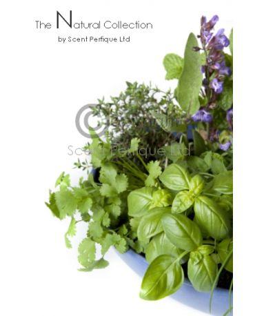 Aromatic Sage & Rosemary
