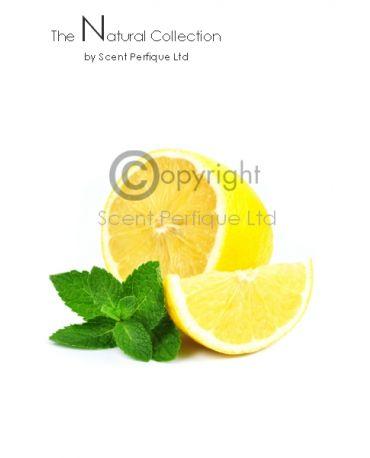 Eucalyptus & Lemon