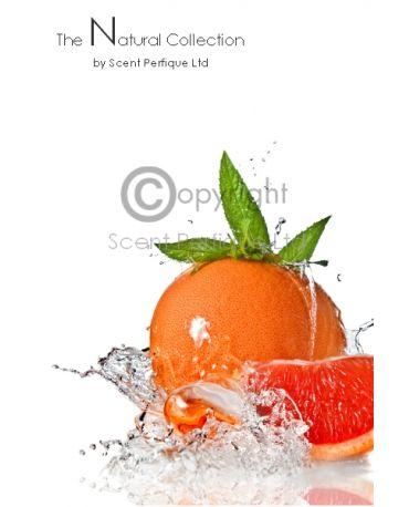 Orange Grapefruit Mojito