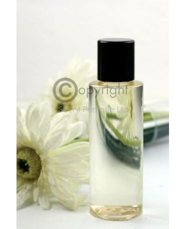 Aroma Diffuser Fragrance Oils Bulk (Concentrated Formula)