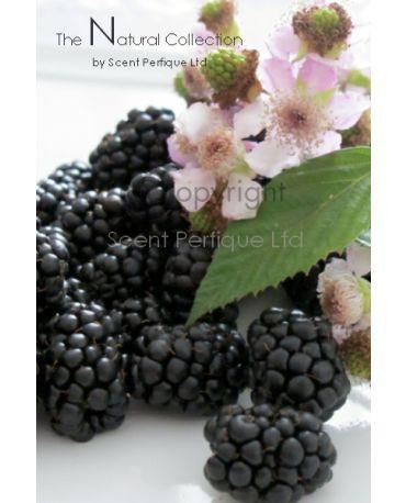 Blackberry Ylang Ylang