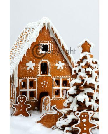 festive-gingerbread