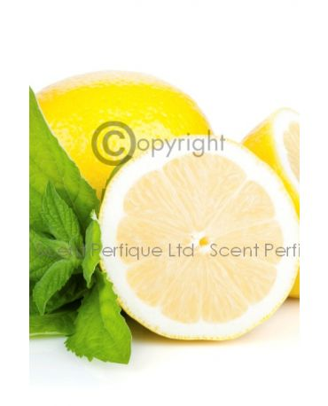 Sicilian Lemon & Mint CONC Fragrance Oil