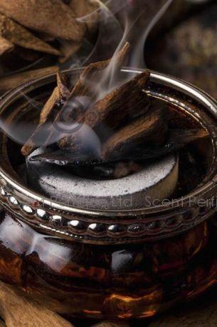 Oud Paleo INTENSE Fragrance Oil
