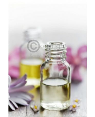 Eau De Parfum Oil