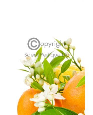 Orangespearmint