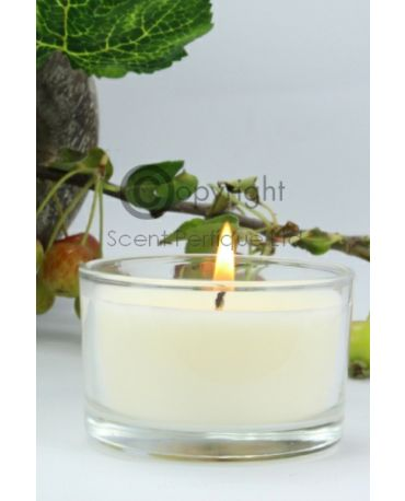 Luxury Scented Travel Candle