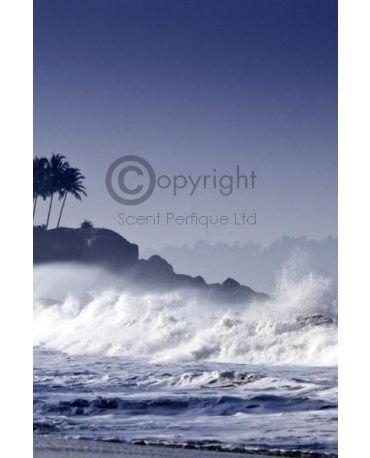 coastal-breeze