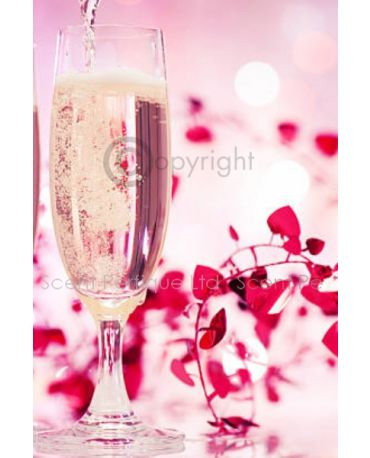ROSE PROSECCO & CASSIS CONC FRAGRANCE OIL