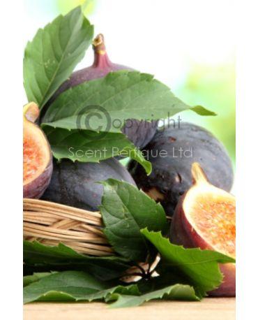 wild-fig