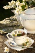 Black-Tea-Jasmine