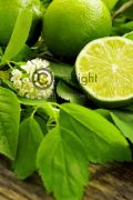 French Lime Blossom