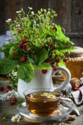 Wild Strawberry & Parsley Fragrance Oil